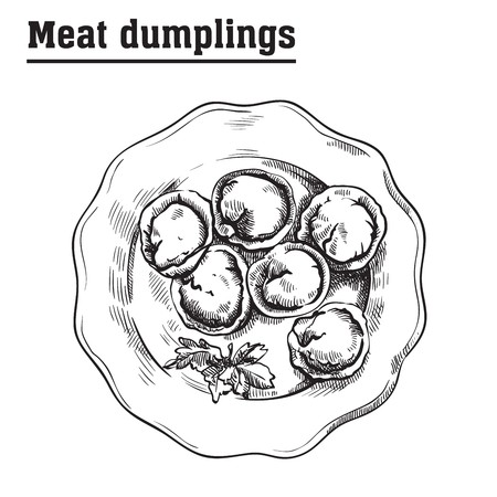 meat dumplings. ravioli. main courses. vector sketch on a white background Stock Vector - 66763778