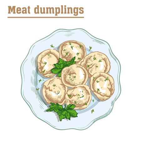 meat dumplings. ravioli. main courses. colored illustration on a white background Stock Vector - 68184569