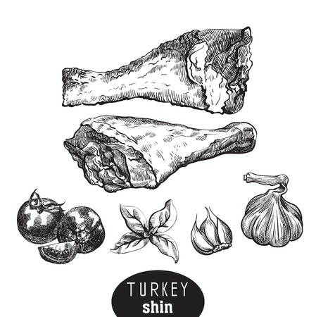 poultry meat and spices Illustration
