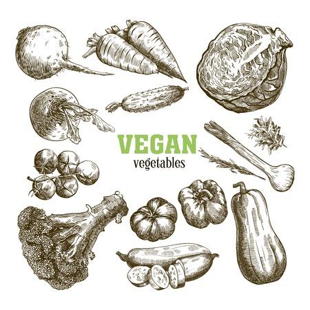 Zestaw ilustracji warzyw.