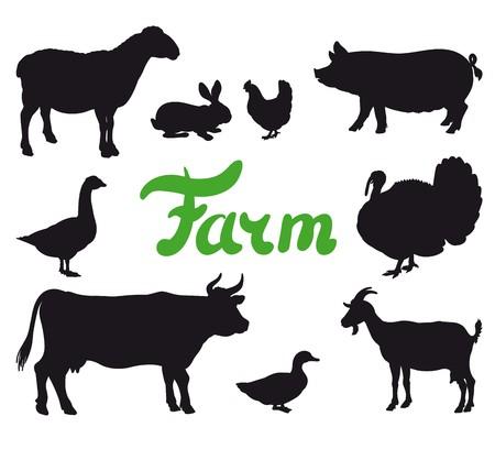 Farm animals black icons.
