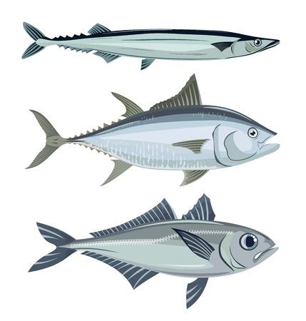 魚。魚介類。白の 3 つのベクトル オブジェクトのセット
