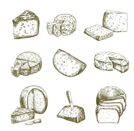 Différents types de fromage. Ensemble de croquis de vecteur sur blanc Vecteurs