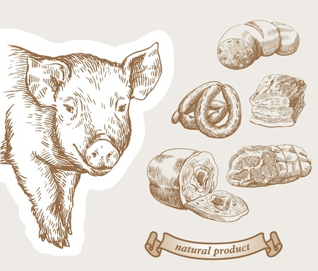Sketch the pig. Pork meat products with the inscription