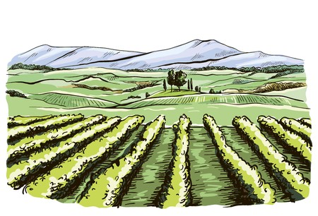 color drawing of the landscape of the Italian province of Tuscany Illustration
