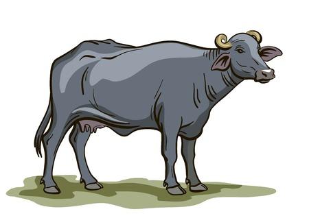 black buffalo pattern on white background  イラスト・ベクター素材