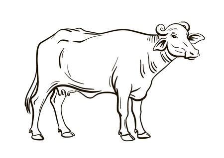 black and white figure of a stylized buffalo  イラスト・ベクター素材