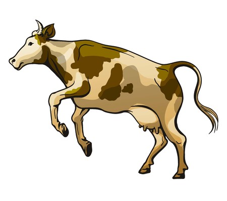 color drawing of a jumping cow on white background