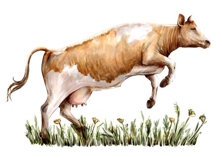 sketch of cow drawn by hand. livestock. cattle. animal grazing