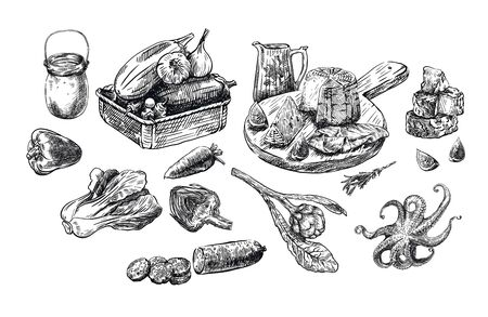 natural products. set of vector sketches on a white