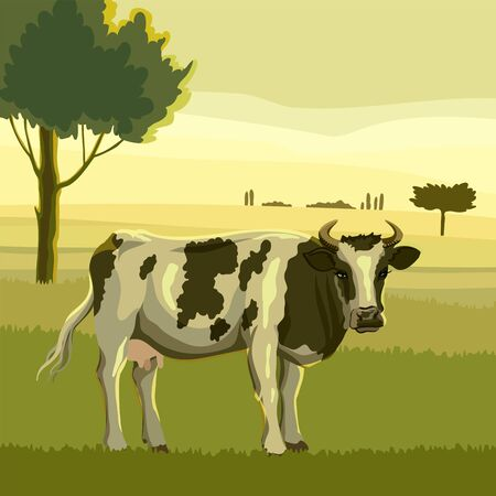 breeding cow. animal husbandry. livestock vector illustration
