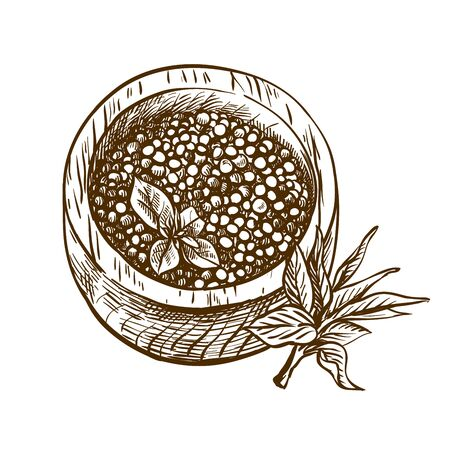 natural salmon caviar. vector sketch on a white
