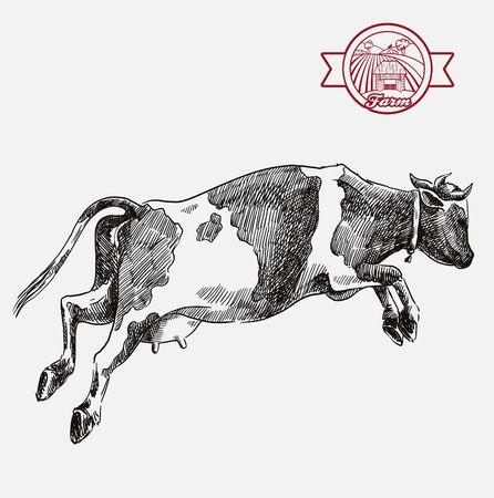 breeding cow. animal husbandry. livestock illustration on a grey Vecteurs