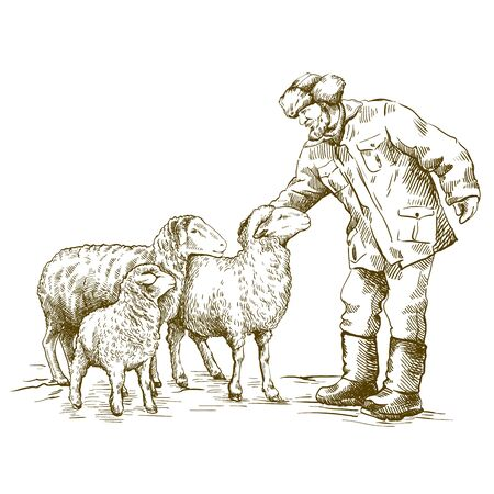 male farmer feeds the sheep. sketch on a white background. animal husbandry Иллюстрация