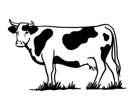 Breeding cattle. silhouette of a grazing cow. vector illustration isolated on white background