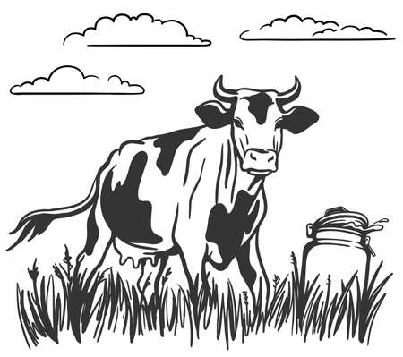 cattle grazing. silhouette of a cow grazing in the meadow. can of fresh steam. milk stands on the grass Иллюстрация