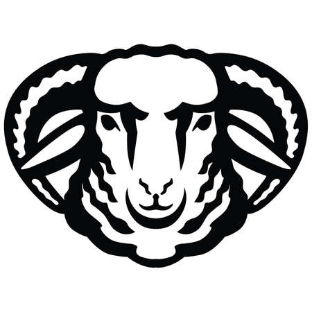 Breeding cattle. head of a sheep. vector sketch on white background