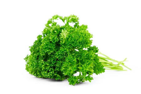 curly leafed: parsley isolated on white Stock Photo