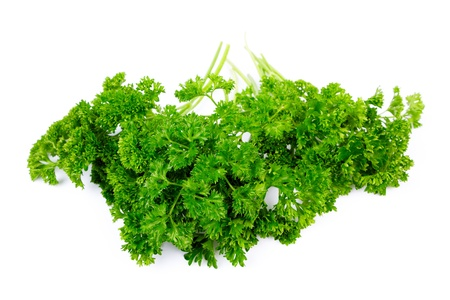 curly leafed: Parsley isolated on white