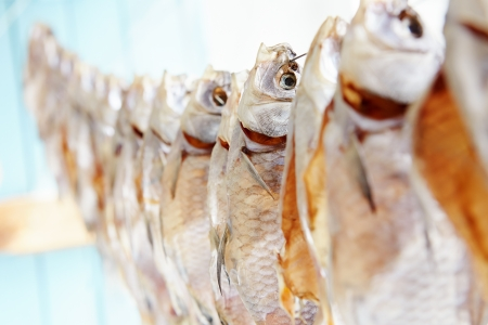 Fish on a rope dries on the sun, close-up