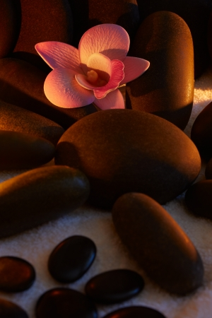 Spa stones with frangipani close-up Stock Photo