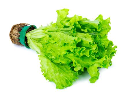 dikon: Lechuga verde fresca aislada en blanco Foto de archivo