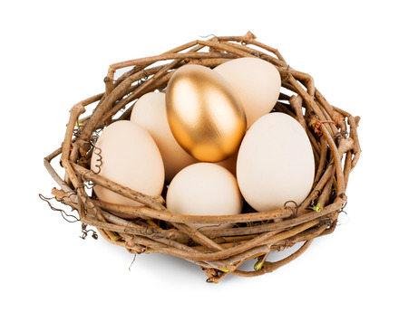 Eggs in nest isolated on white background photo