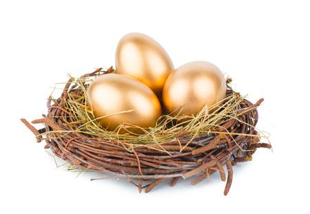 Eier im Nest isoliert auf weißem Hintergrund Standard-Bild - 27300564
