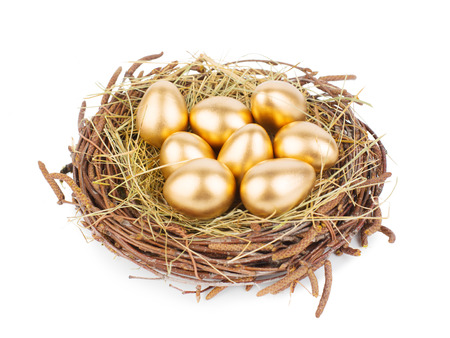 Eggs in nest isolated on white background