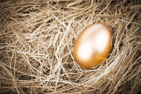 Golden egg in nest from hay close-up Stock Photo