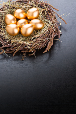 Eggs in nest with copyspace