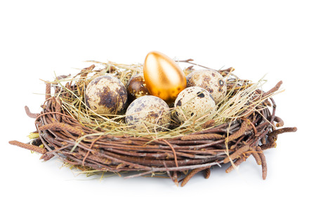 Gold eggs in nest from hay isolated on white photo