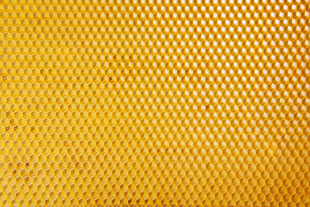Horizontal Honeycomb close-up Background, macro Stock Photo