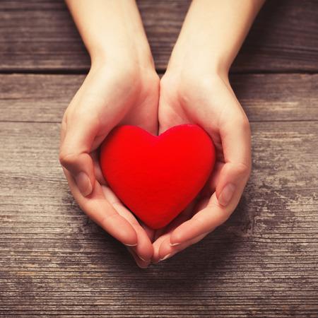dando la mano: Manos femeninas que da el corazón rojo