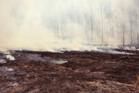Grass Fire with Smoke, horizontal
