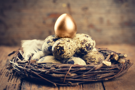 Quail Eggs with one gold in nest