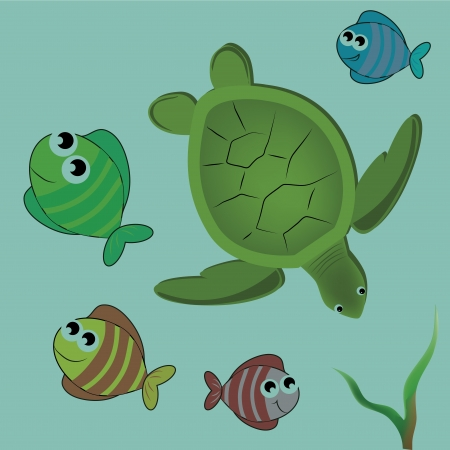 a beautiful green turtle swimming with colorful fishes Vector
