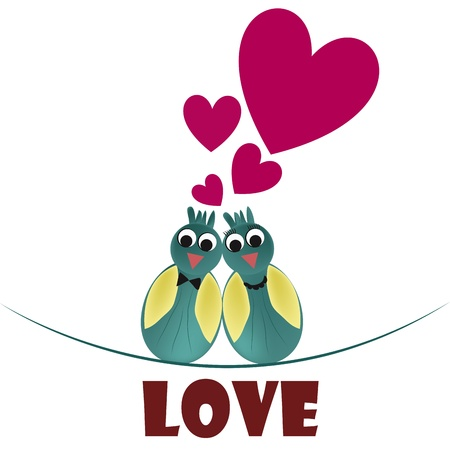 two elegant and beautiful birds loving each other in valentines day Vector