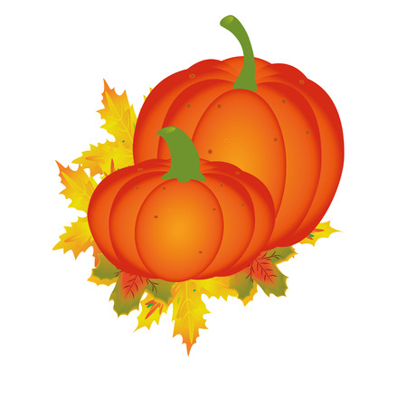 two orange pumpkins with some leaves around it Vector