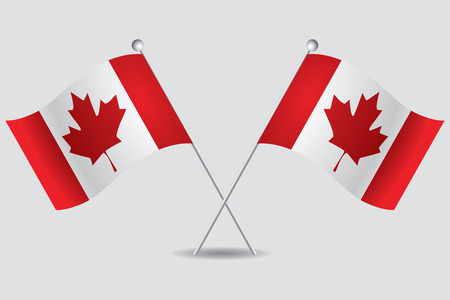 canada flag: a pair of canadian flags in grey background