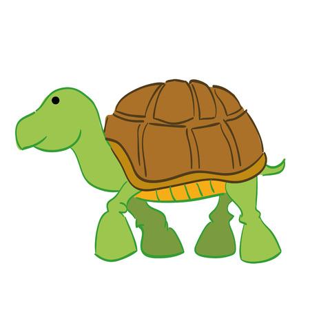 green turtle: una tartaruga verde su sfondo bianco