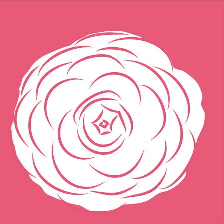 he is beautiful: Isolated flower on a colored background. Vector illustration