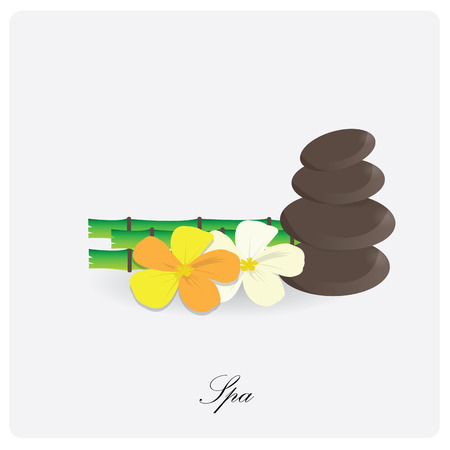 group therapy: Isolated pile of stones, bamboo and some flowers on a white background