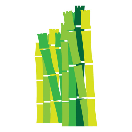 Isolated group of bamboo sticks, Spa vector illustration Illustration