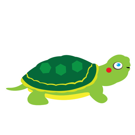 Isolated cute tortoise on a white background