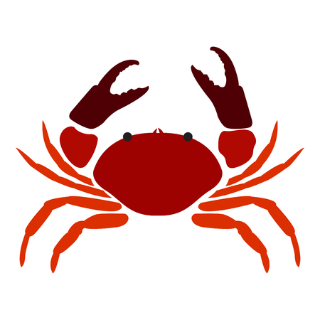 Isolated abstract crab on a white background, Vector illustration