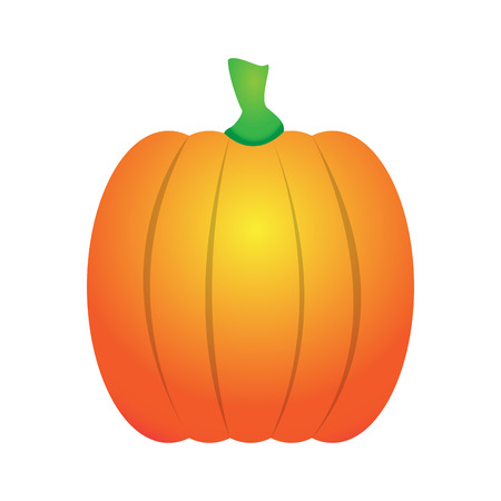 non: Isolated non carved pumpkin on a white background, Vector illustration Illustration