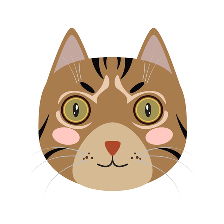 Isolated cute cat icon on a white background, Vector illustration