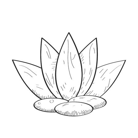 Geïsoleerde spa pictogram