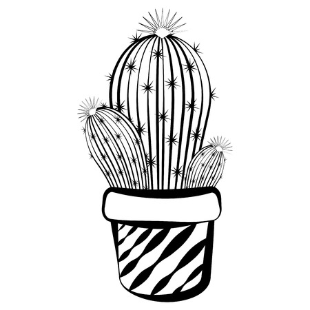 Sketch of a cactus